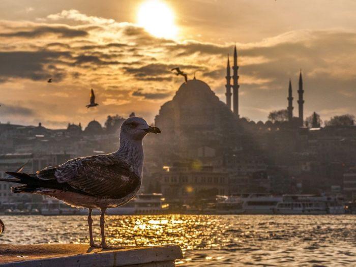 Bósforo, Istambul